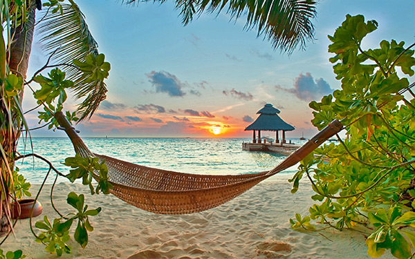 Sunset Hammock on the Beach